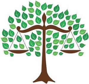 NCSC tree image