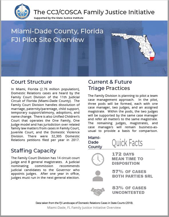 Miami Profile Capture