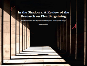 Cover of In the Shadow
