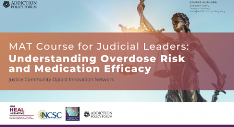 MAT Course for Judicial Leaders