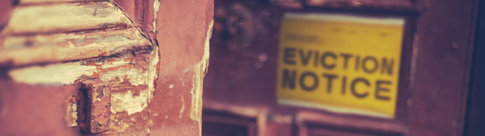eviction banner image