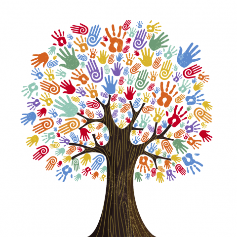 Increasing diversity and fostering inclusion